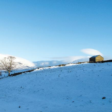 Field Barn in Snowy Landscape